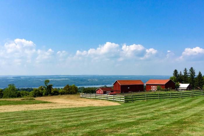 4. This particular peaceful view of Seneca Lake.