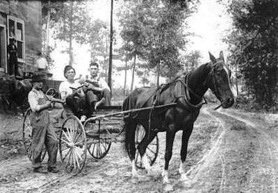 Paradise 1898 buggy
