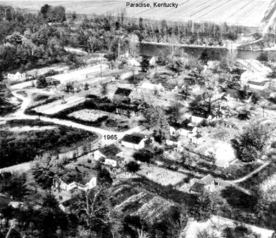 Paradise 1965