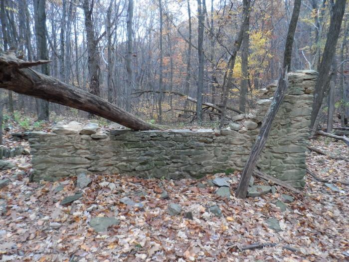 Pocosin-Mission-Shenandoah-National-Park-4