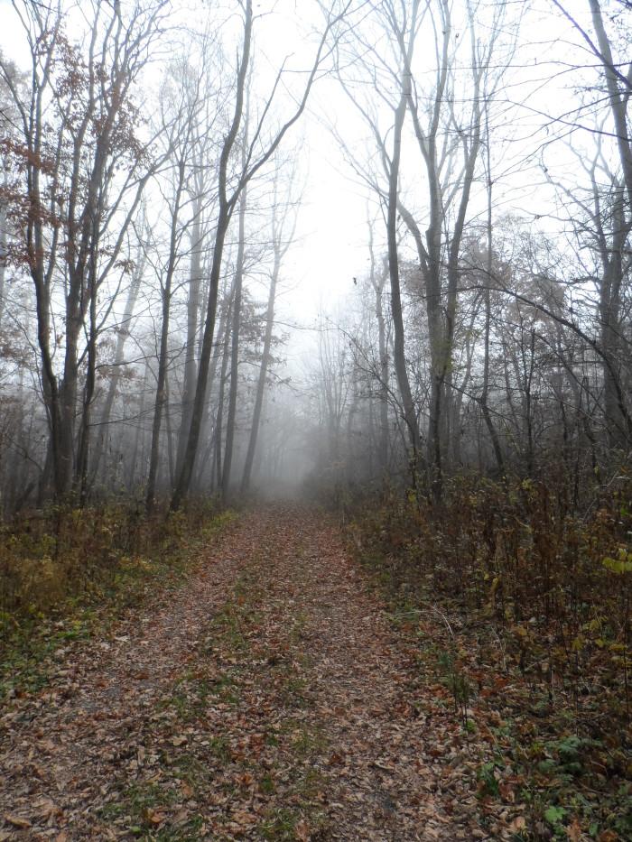 Pocosin-Mission-Shenandoah-National-Park