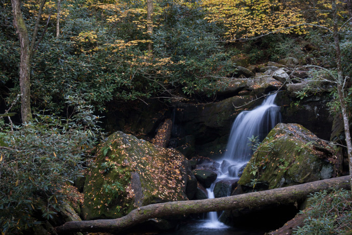 1) Roaring Fork Motor Nature Trail - Great Smoky Mountains