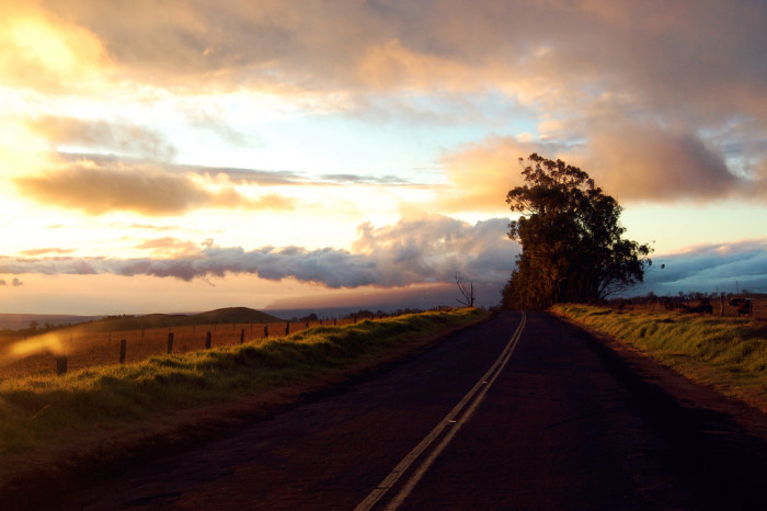 The highway dates back to 1849, when Minister of Finance Gerrit P. Judd proposed the construction of a road directly between the two population centers on Hawaii Island. The project was started using prison labor, but was abandoned after ten years and only 12 miles when the 1859 eruption of Mauna Loa blocked its path. The road can be seen on maps as Judd Trail.