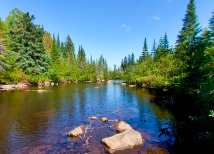 It was the first park in the MN system designated for backpackers, and remains a backpack-only park - with backcountry primitive sites.