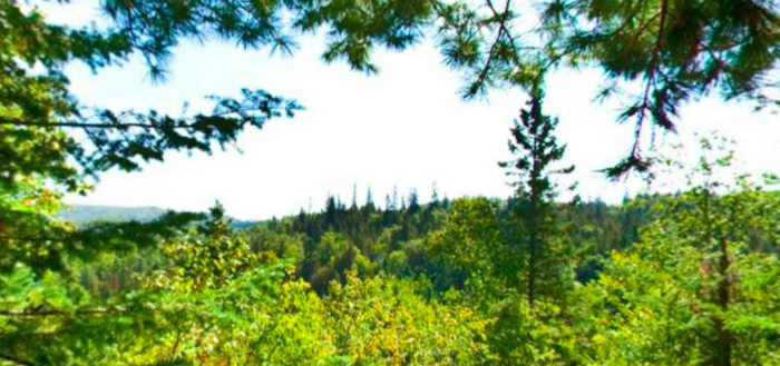 There are 24 miles of non-stop views in the park, including 5 miles of the Superior Hiking Trail.
