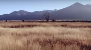 What This Drone Footage Caught In New Mexico Will Drop Your Jaw