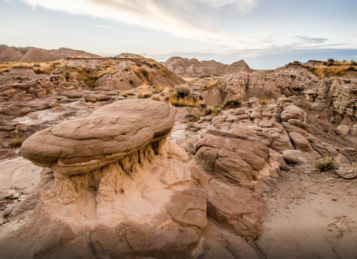 These powerful natural forces continue to wear away at the rocks, constantly changing them.