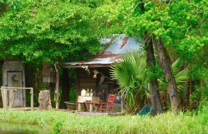 5. Manchac Swamp, 110 Frenier Road, Laplace