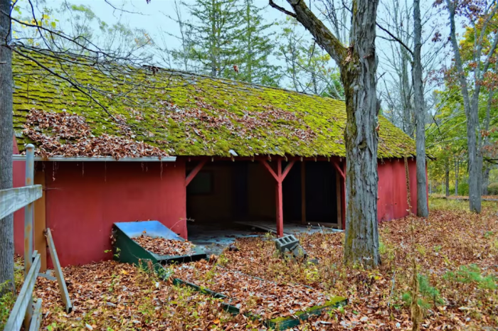 Currently seeking people to financially help the abandoned area become lively again, The Old Game Farm offers unique ways for New York's residents to make donations and visit the area.