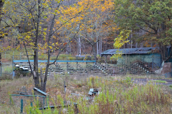 Where you could once see bears riding motorized bikes and elephants performing mind-blowing acts, now lies an aged stadium, overgrown with nature.
