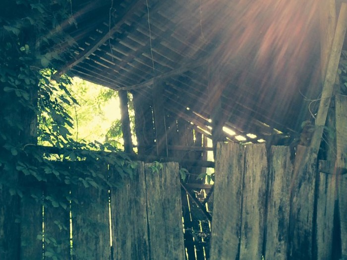11. She also found this lovely barn in Cheatham County.