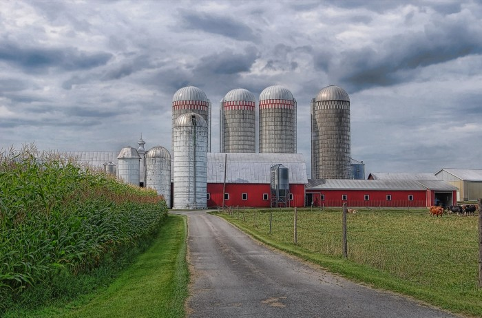 11. While many of New York's silos have failed the tests of time, we're in awe of all the ones still standing on our farms.