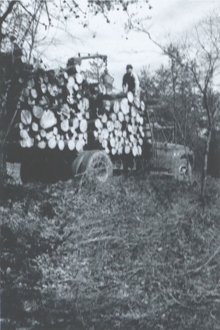 4. Simple blurry shot of loggers in the '60s.