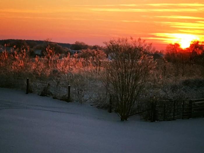 4. Smith's Grove sunrise