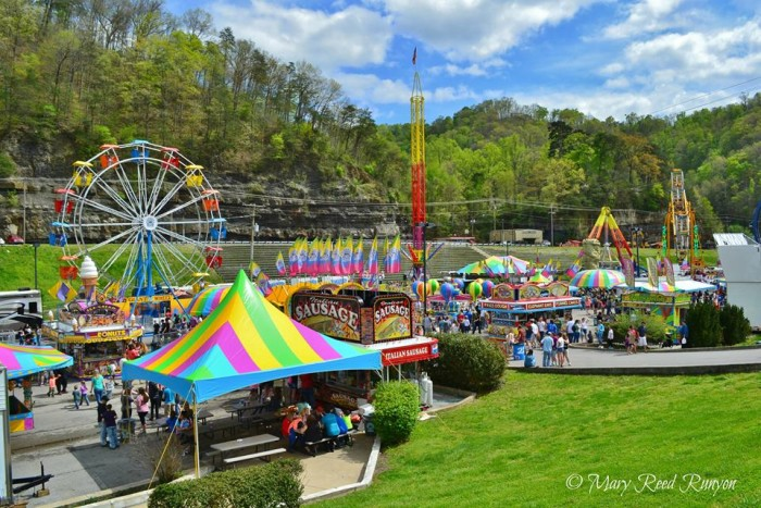 15. The fair and carnivals