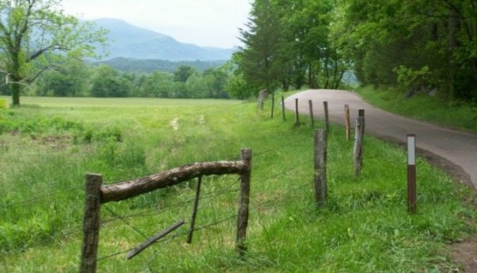 2) This green Cades Cove backroad makes us long for spring
