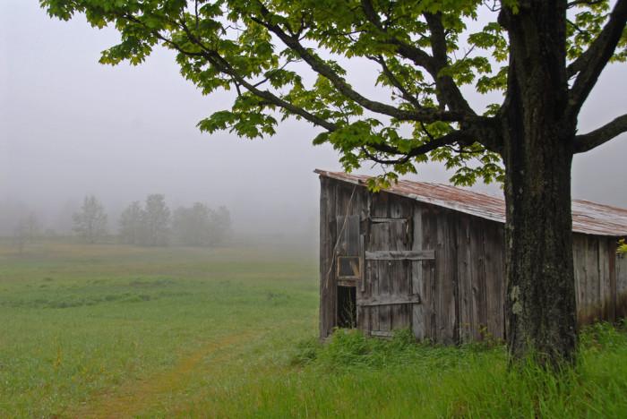 8. Treat Farm Building in the Fog near Sleeping Bear National Lakeshore.