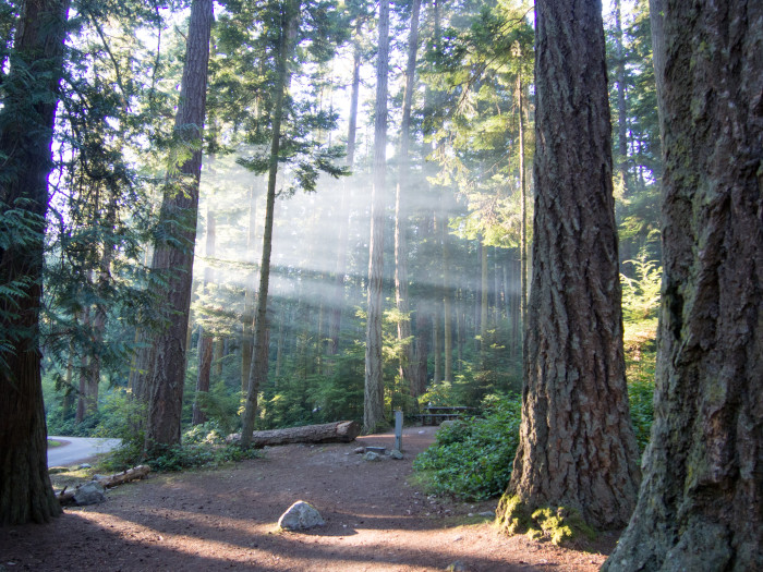 Deception Pass State Park In Washington
