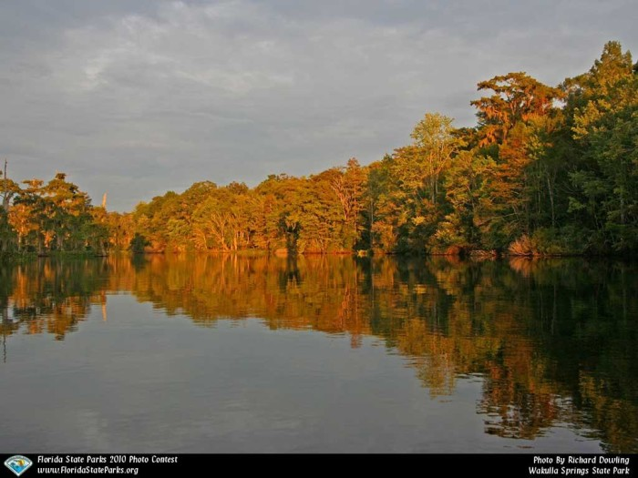 Wakulla-Springs_contest_Richard-Dowling_Wakulla-River
