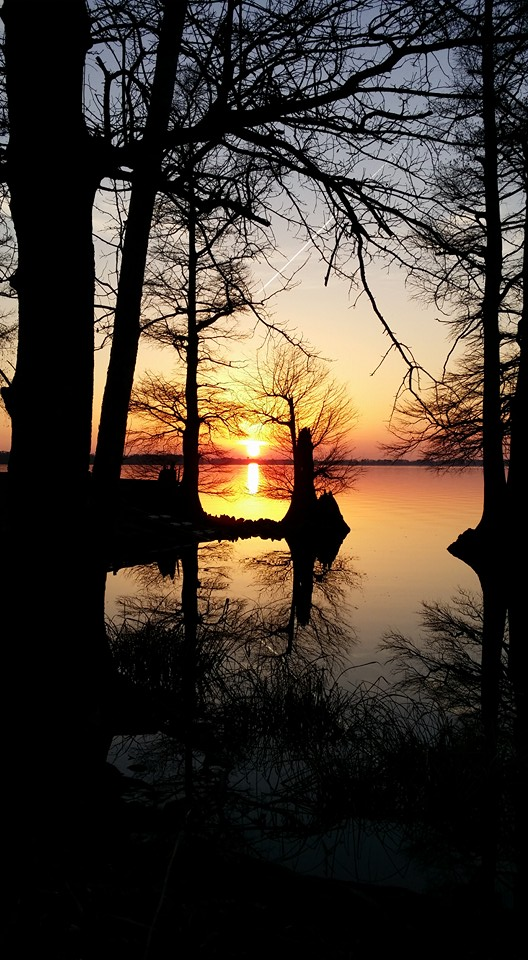9. Wintry sunsets on Reelfoot Lake.