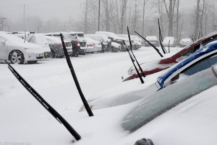 7. When you know a parking lot full of raised wiper blades is more reliable than any weather report.