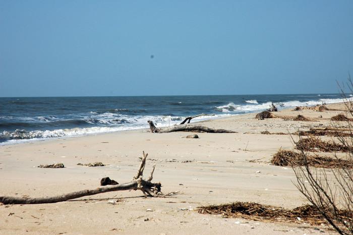botany-bay-beach