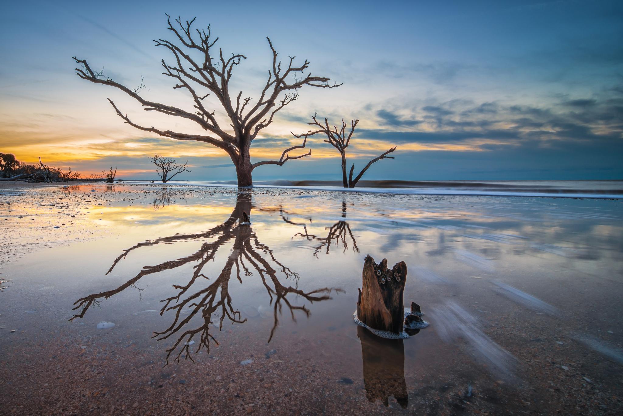 South Carolina S Breathtaking Botany Bay