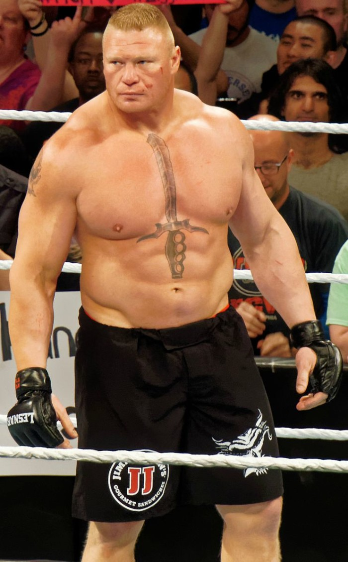 Brock Lesnar - famous people from sd