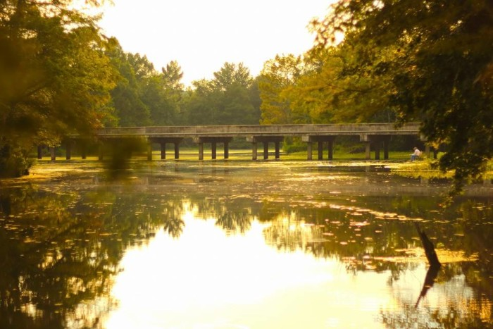 5. A Country Bridge Over the Idyllic Bundick Lake