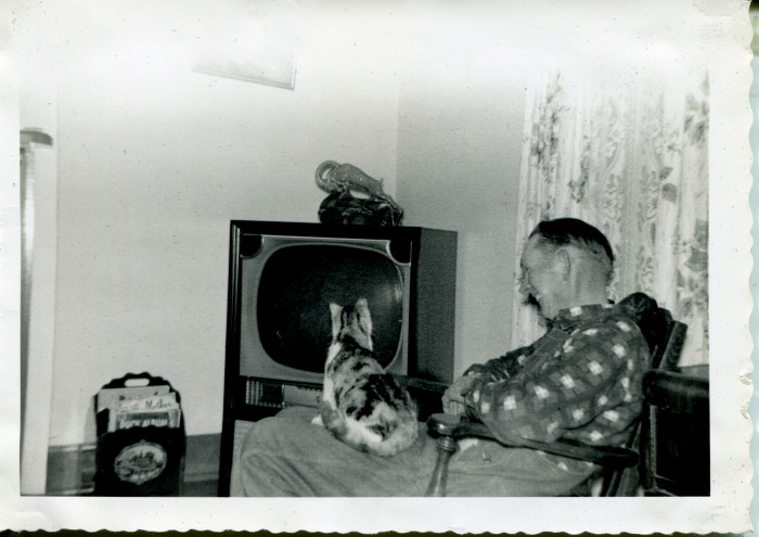 1. Here, Arthur Wendt and a cat (not his own) watch television in Cameron (Marshall County) circa 1955.