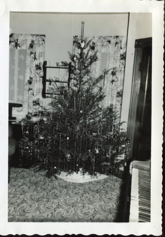 6. This is a Christmas tree from 1953 in Cameron.