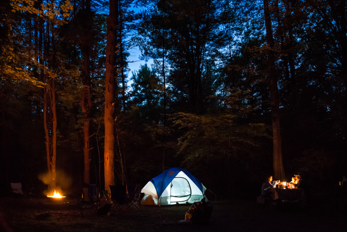 With roughly 300 sites, an unforgettable camping experience is available to be had here.