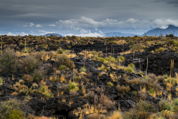 4. Valley of Fires Recreation Area, 6158 US Highway 380, Carrizozo, NM 88301