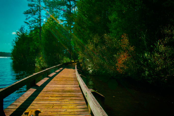14 Underrated Places In South Carolina
