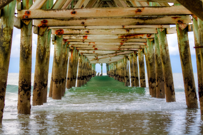 8. ...or they could shoot UNDER the Cherry Grove Pier. It's beautiful and suspenseful at the same time.