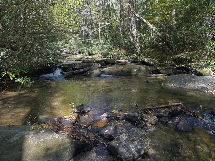 The trail winds along a wonderful little creek.