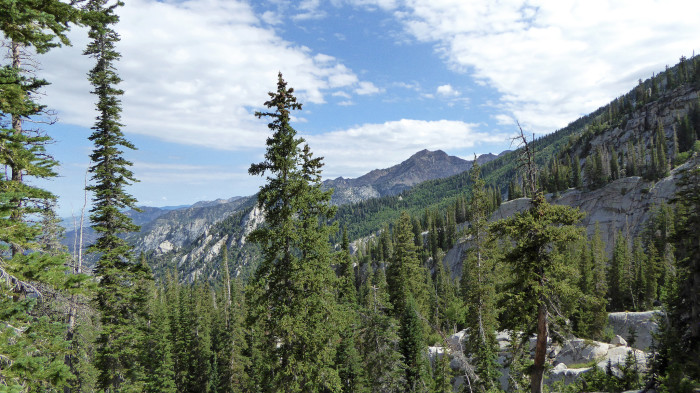 7. Uinta-Wasatch-Cache National Forest