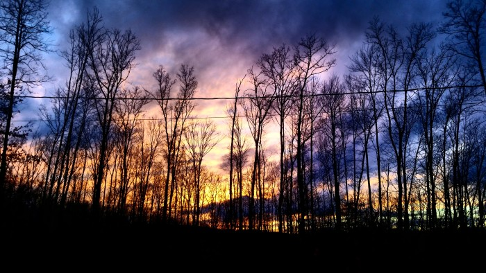 4. Carly Barker took this shot in her yard at Glen Morgan.