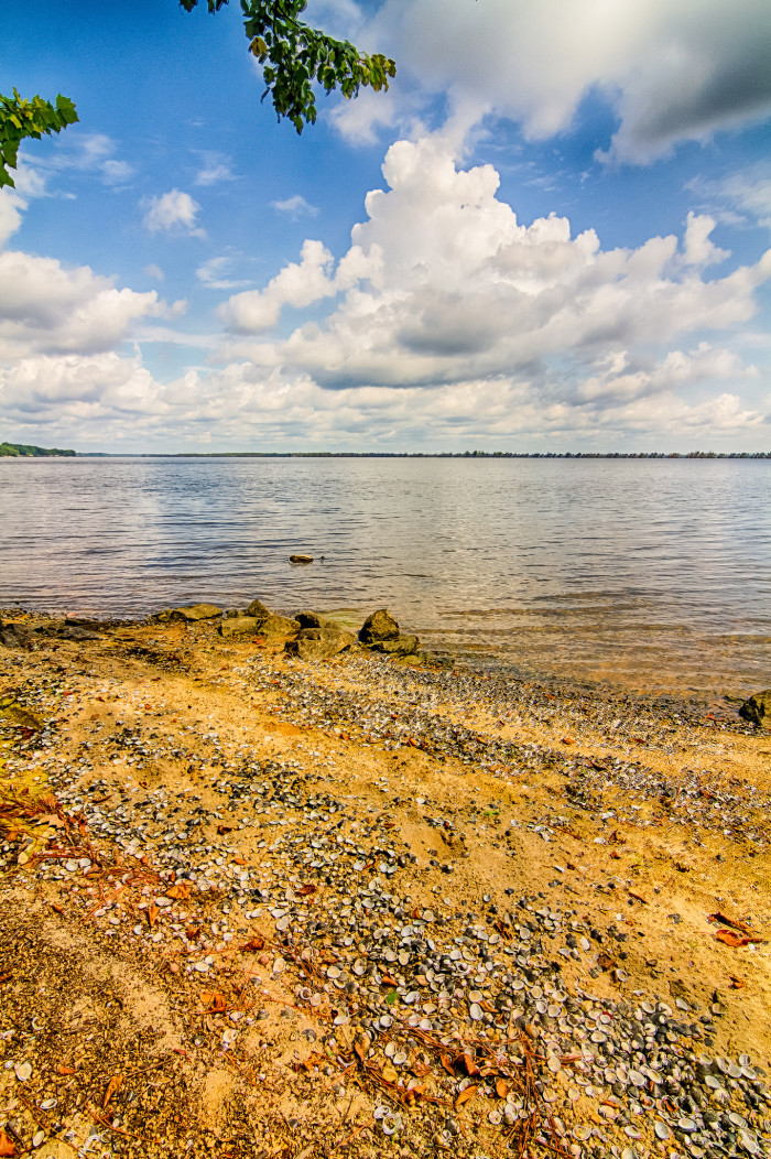 5. The golden shoreline of Lake Marion, as seen from Santee State Park in South Carolina.