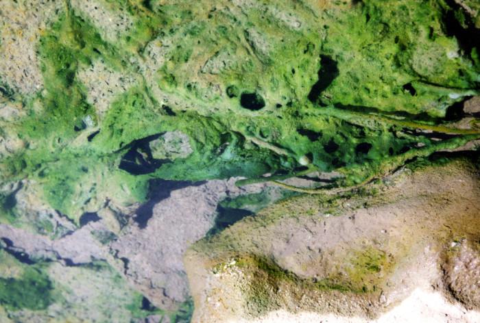 4. Middle Fork (Lightfeather) Hot Springs, near Gila Hot Springs