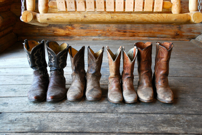 2. It is illegal to have the hind legs of farm animals in our boots.