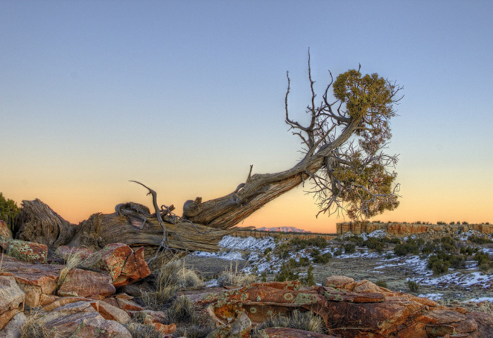 2. The untamed parts of New Mexico, like the Ojito Wilderness, remind us of how small we are...