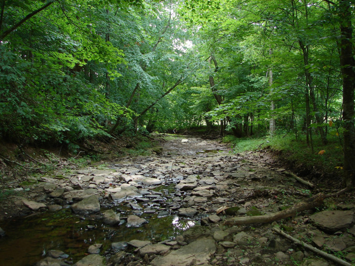 3. This dry creek bed in Liberty (Putnam County).