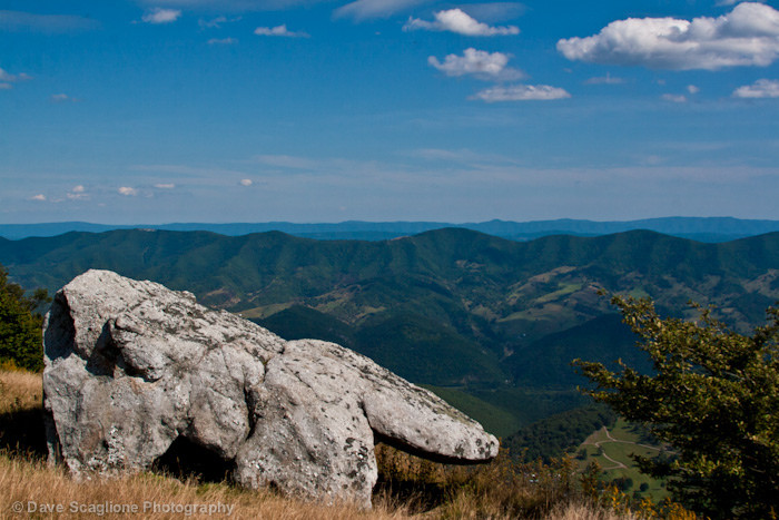 it offers views of the Germany Valley, North Fork Mountain and the Allegheny Plateau.