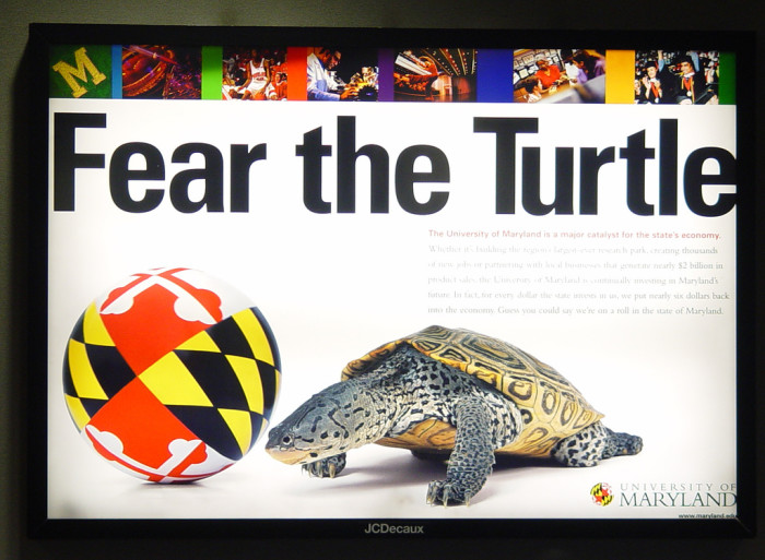 2) This intimidating Terrapin will have you screaming with fear, spotted at the BWI airport.