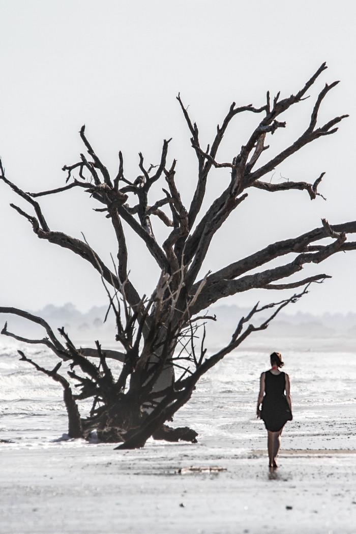 woman-under-tree-at-botany-bay-beach