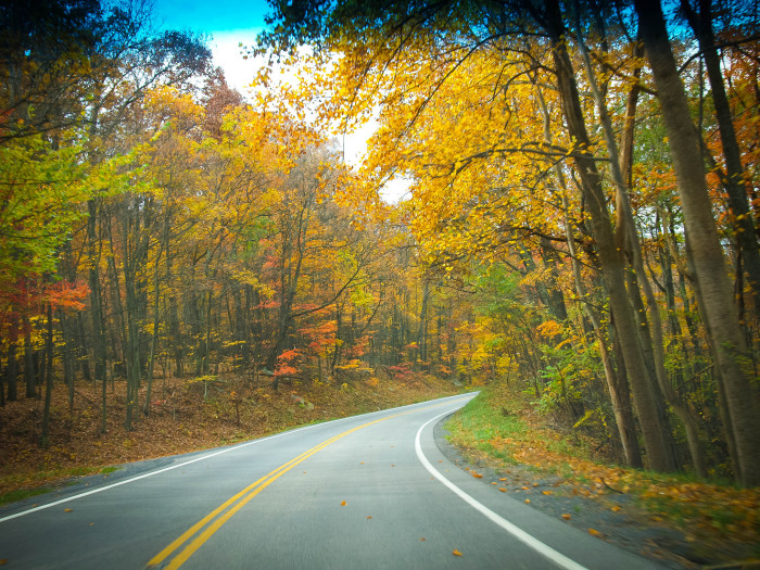 4. The views in fall don't get any better than in West Virginia.