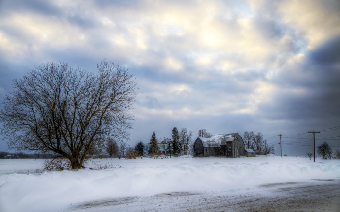 14. A wintery setting on a farm in the North Country of New York.