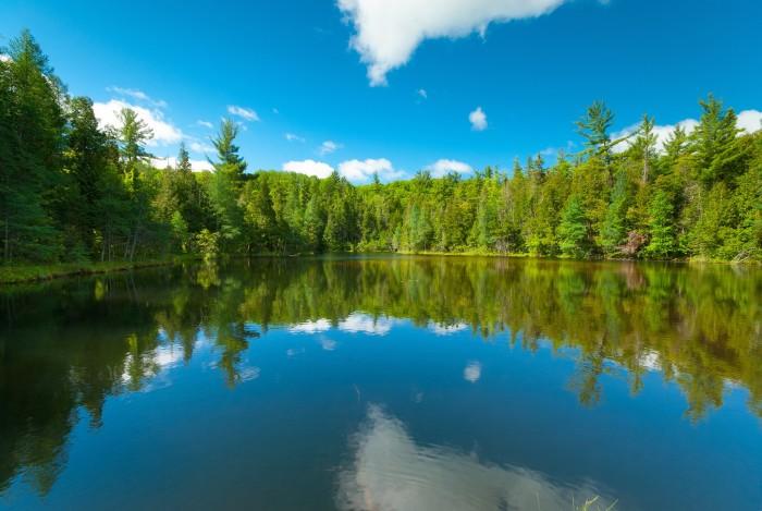 8. Chequamegon-Nicolet National Park