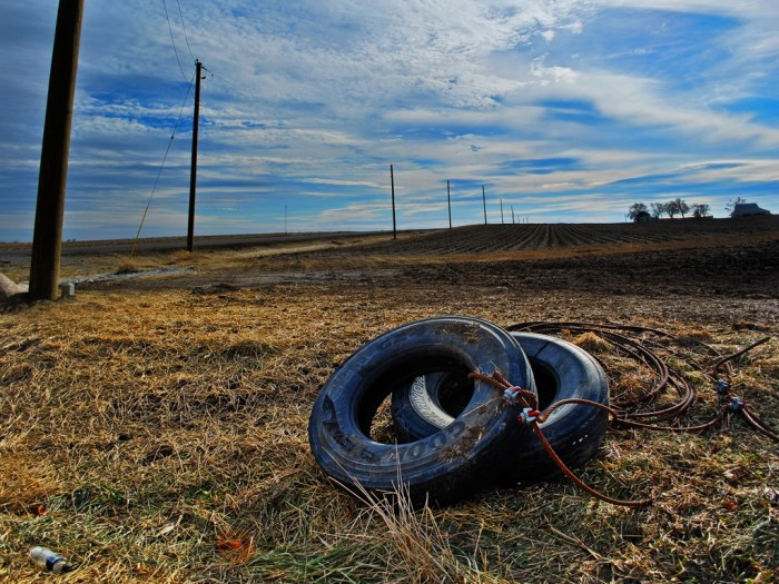 15. Discarded tires never looked so beautiful as they do in Forrest.